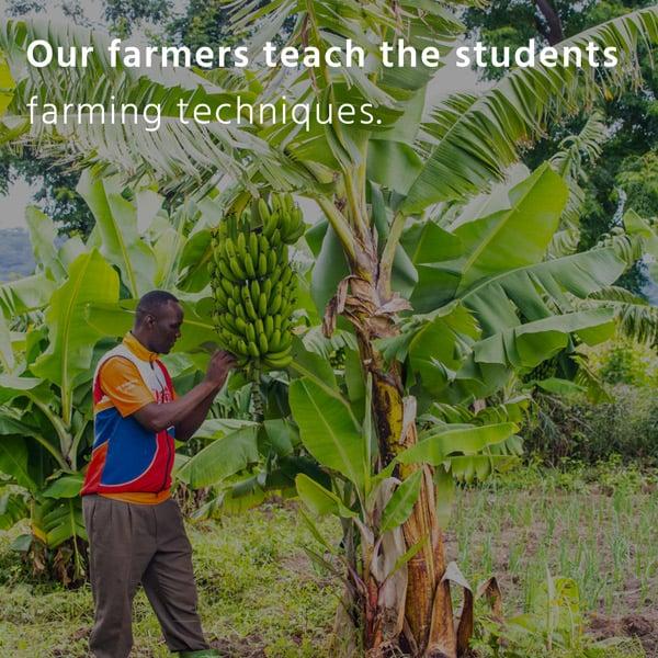 Impact Tile our farmers teach the student farming techniques